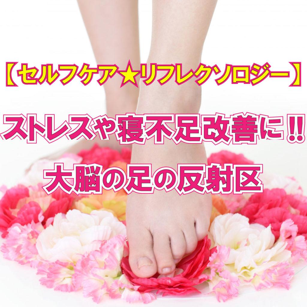 【セルフケアリフレクソロジー】ストレスや寝不足の改善に!!大脳の足の反射区